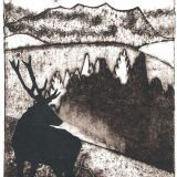 Stag, Glen Loth