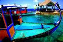 Elaidoo Island, Maldives