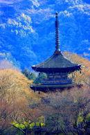 Kyoto Temple Japan