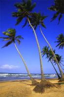 Galle  SriLanka