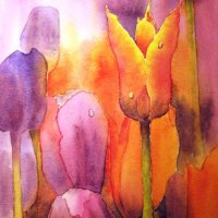 tulips in watercolour