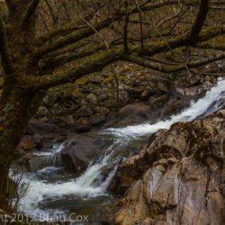 20120422-IMG 4920-River Shiel, Glen Shiel, Kintail