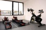 The Gym begins to take shape.