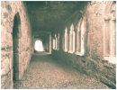 Bective Abbey, Meath