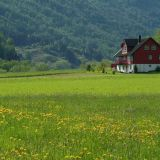 House in meadow Norway