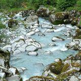 Scandinavian stream