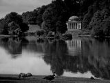 Stourhead View with Geese