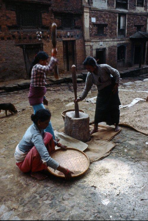 Pounding maize