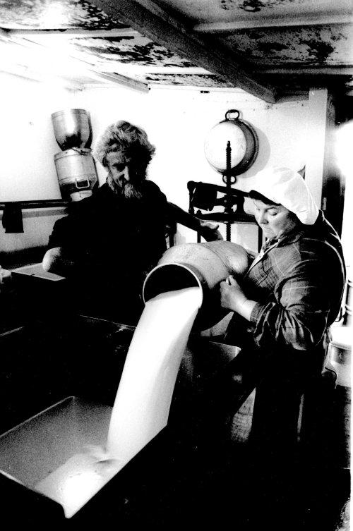 Cheese making, Abernat