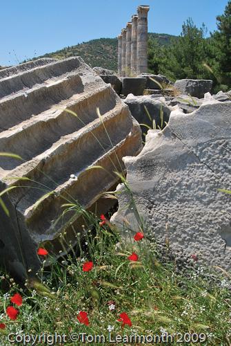 Priene, Roman ruins, Turkey