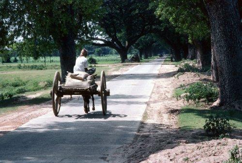 Rajshahi District