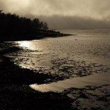 Springs Rivers Oceans-62