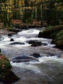 Golitha Falls Cornwall