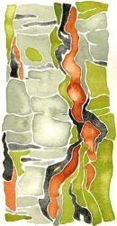 Betula: watercolour 50h*36w cm SOLD