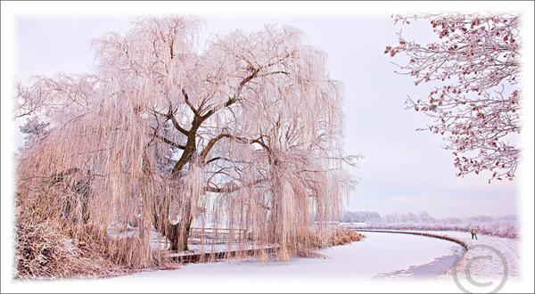 Frozen Canal Miford 3