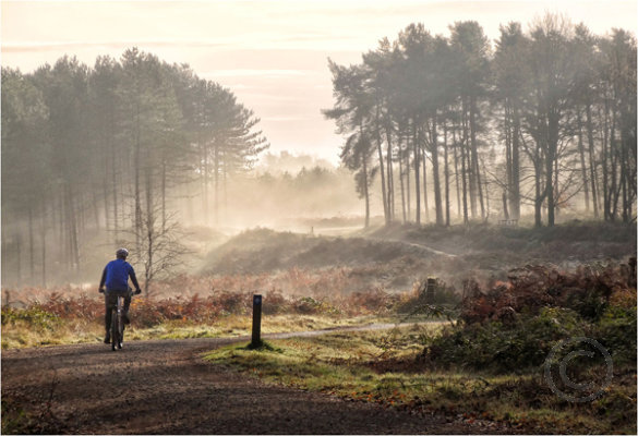 Misty Morning on Cannoch Chase 4