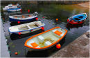Harbour Boats