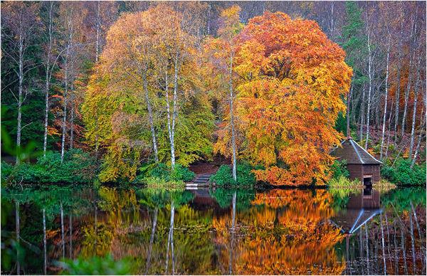 Loch Dunmore Autumn 2