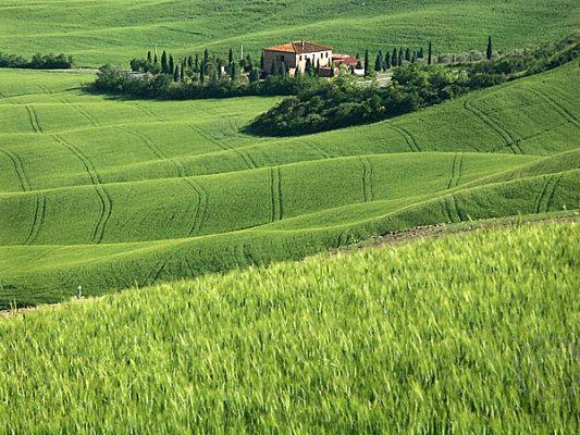 Tuscan Landscape 2