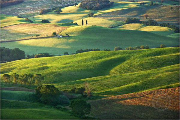 Tiscan Landscape