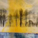 WINTER POPLARS