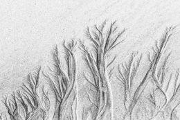 Baleshare sand patterns