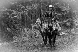 A Canadian Cowboy