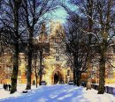 Order No X094: Season's Greetings! Christ Church College, Oxford, looking back from the avenue of trees