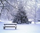 Order No X096: Season's Greetings! A winter wonderland in University Parks, Oxford