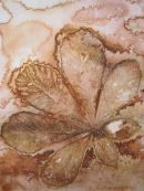 Sepia Chestnut