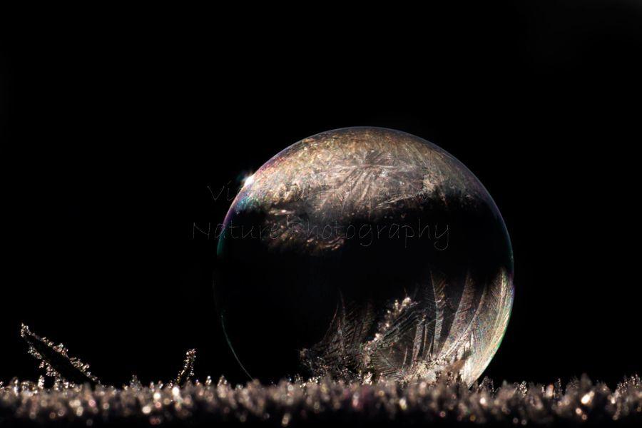 Freezing Planet