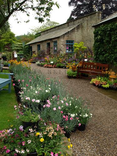 Eggleston Hall Gardens