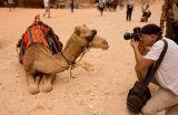 Camel portrait!