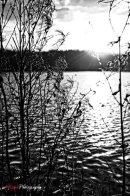 Dartmouth Park Shoot 09 copy