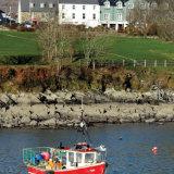 31. Fishing Boat, Schull