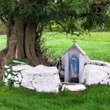 122. Lady's Well, Titeskin, East Cork