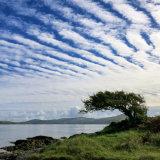 129. Mackerel Sky, Sunny Cove, Sheep's Head