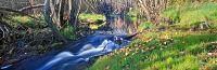 Livingstone Creek