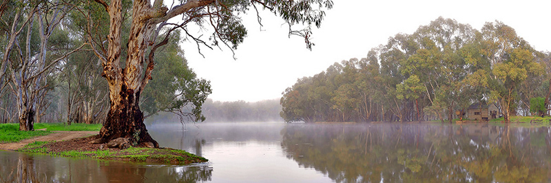 Fog on the Murray