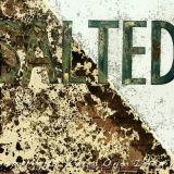 saltedfin