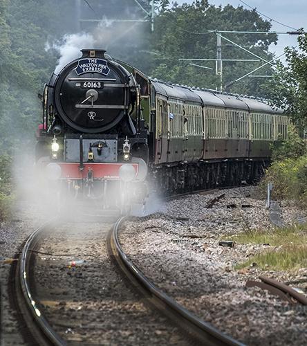 529-Approaching Frinton