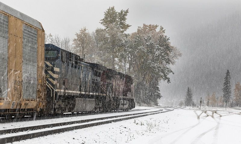 12 Stephen Lee Tracks Through the Snow