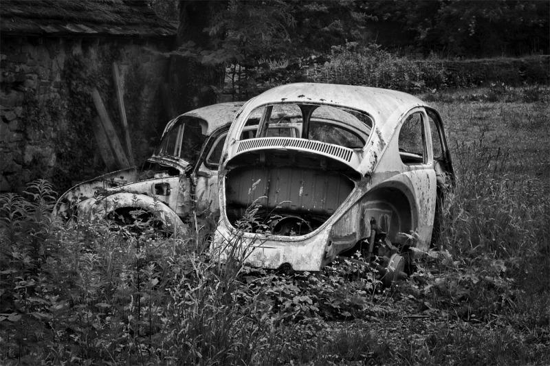 1 Old Beetles by Derek Philpott