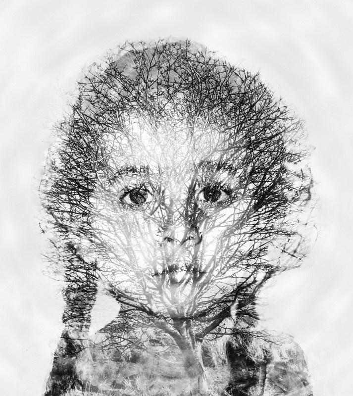 Arteries and Veins by Saleem Taibjee