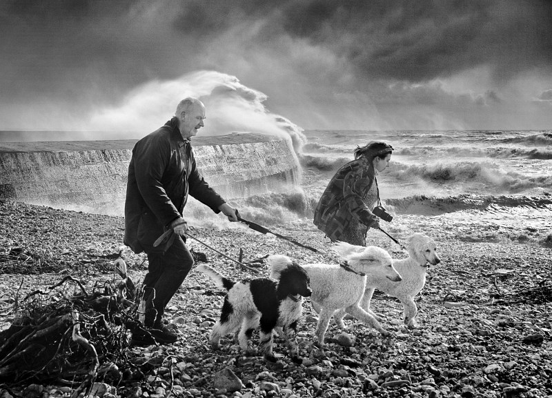 Battling the Elements by Carol Tritton, Highly Commended Section B