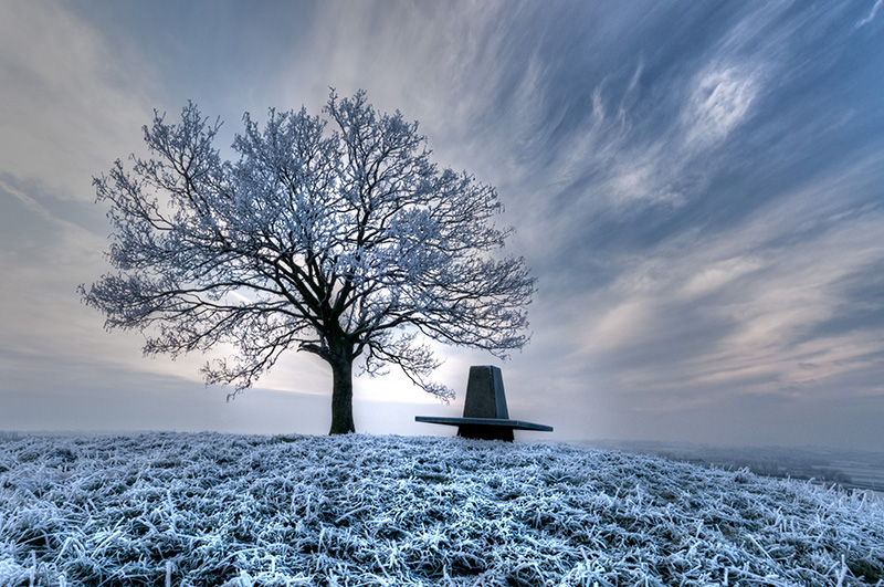 Burrow hill hoare frost by Rob Bridge (LRPS Panel)