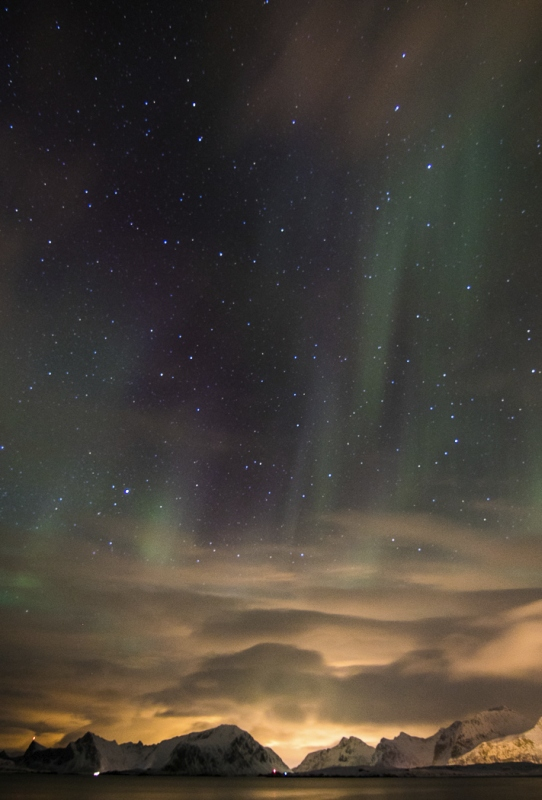 Lofoten Lights by Annette Beardsley