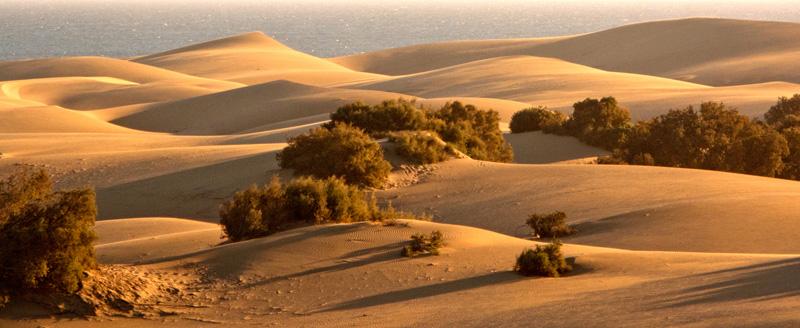 Maspalomas Dunes by Frances Underwood (LRPS Panel)