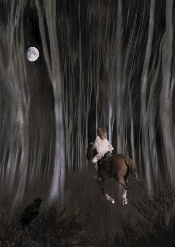 Night Rider by Helen Gibson