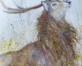 Rowan - Red Deer Stag 38x56cm